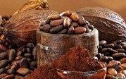 Какао натуральное,  алкализированное,  какао-велла