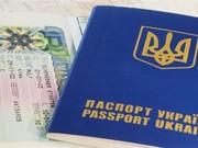 Мульти визы: рабочие,  туристические,  шенген.