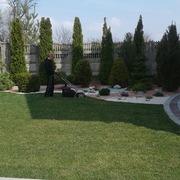 ландшафтный дизайн, рyлонный газон , yход за растениями.цветники, рокарии